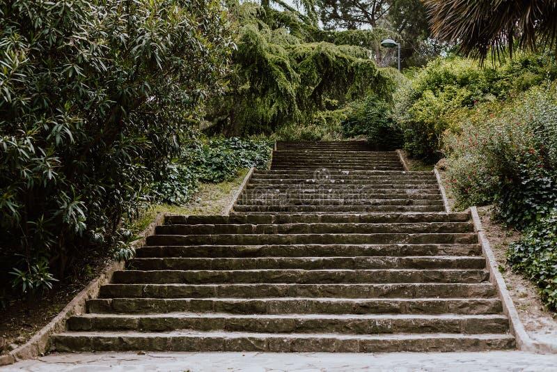 楼梯到一个公园里在巴塞罗那 免版税图库摄影
