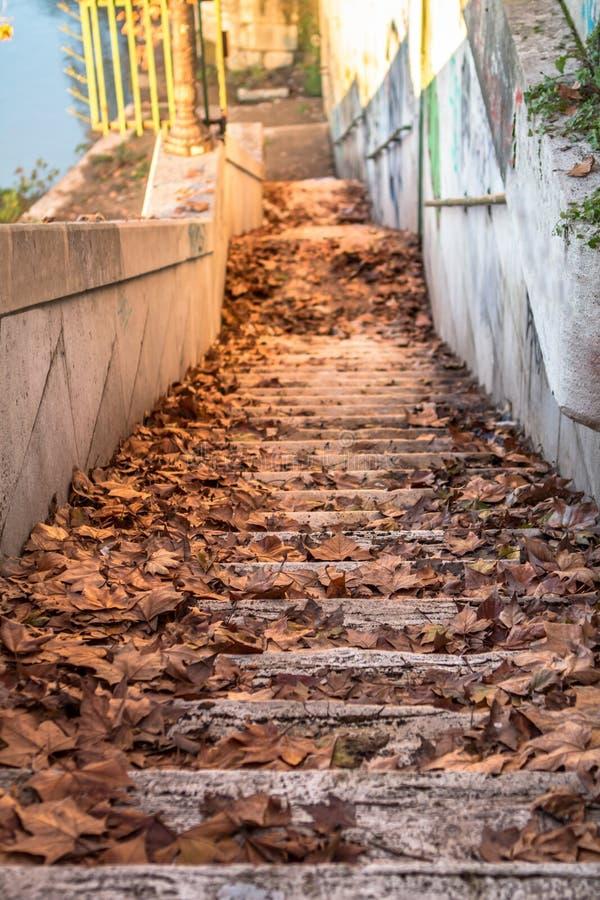 楼梯向河 图库摄影