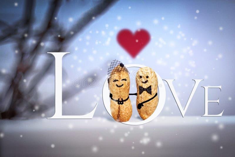 概念亲吻妇女的爱人 婚姻 日期在晚上 由坚果做的创造性的手工制造夫妇 免版税库存图片