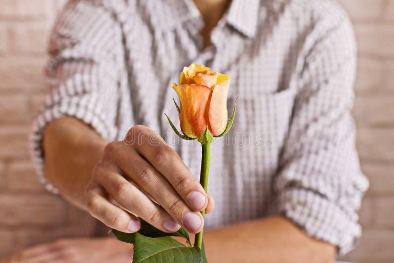 概念亲吻妇女的爱人 拿着桔子的人在手上起来了 华伦泰` s明信片 库存照片