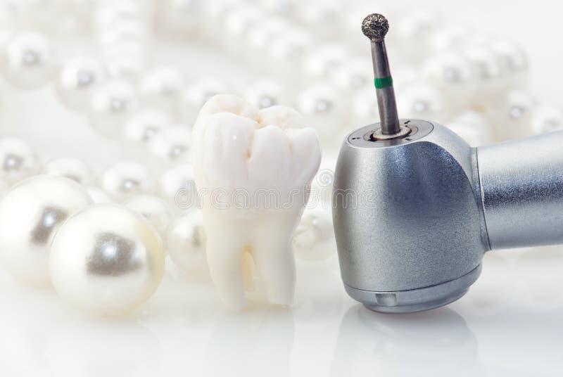 概念健康牙 库存照片