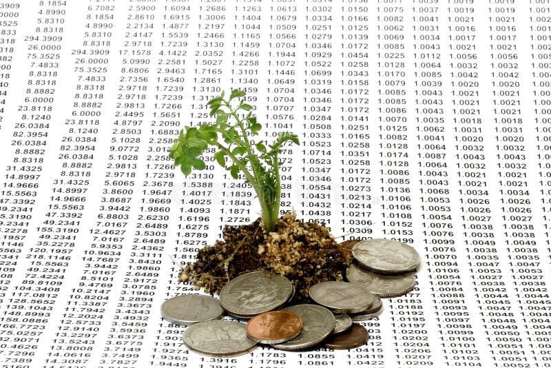 概念增长货币 免版税库存照片