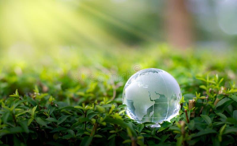 概念救球世界救球环境世界在绿色bokeh背景的草 免版税库存照片