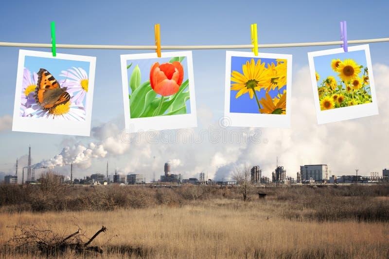 概念生态 免版税库存照片