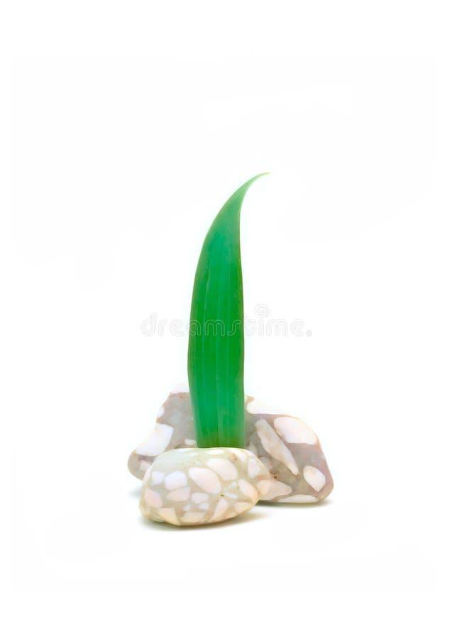 概念绿色生活工厂石头 库存图片