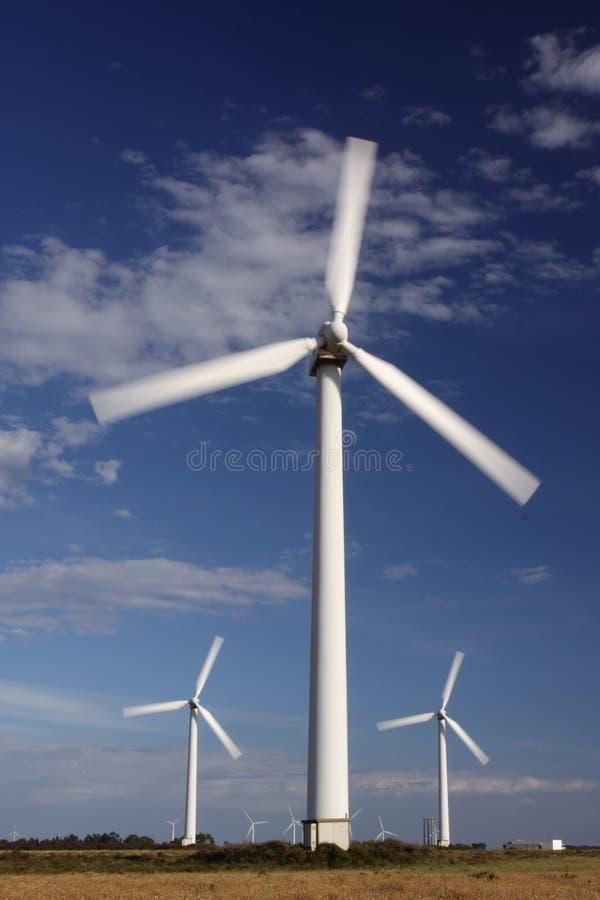 概念能源可延续的风车 库存图片