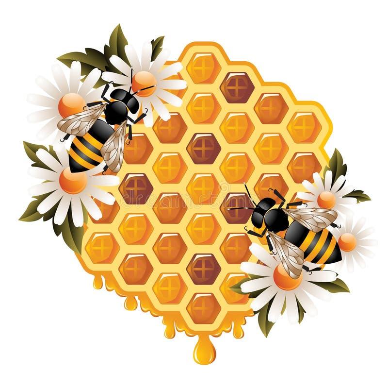 概念花卉蜂蜜 库存例证