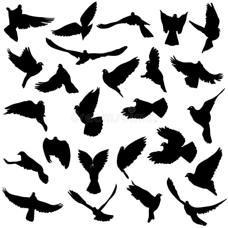 概念鸠爱和平集合向量白色 套剪影  向量例证