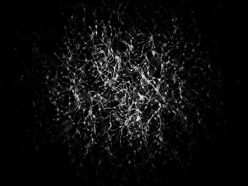 概略的在黑白的纹理抽象背景 库存图片
