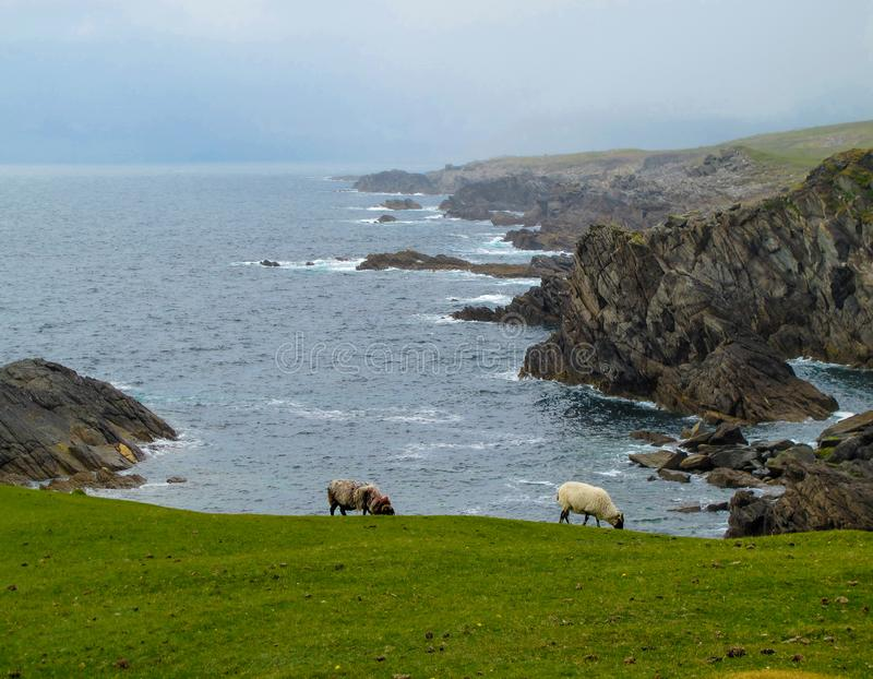 概略的大西洋接合的海岸线阿基尔,马约角,爱尔兰 图库摄影