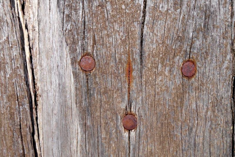 概略的木委员会 免版税库存图片