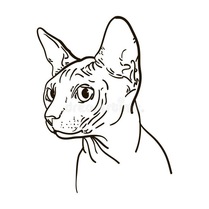 Download 概述猫sphynx传染媒介例证 向量例证. 插画 包括有 beautifuler, 向量, 纹身花刺, 剪影 - 72352790