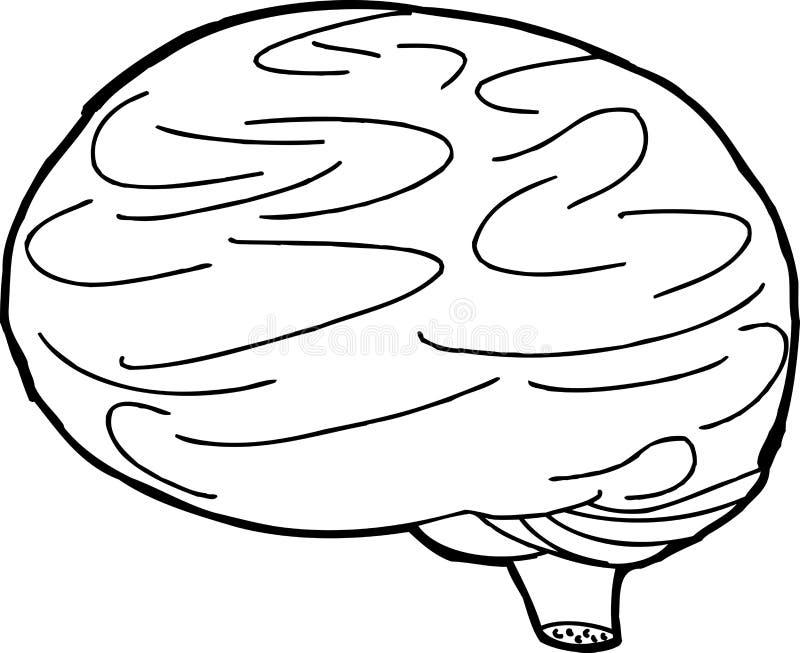 概述脑子剪影 皇族释放例证