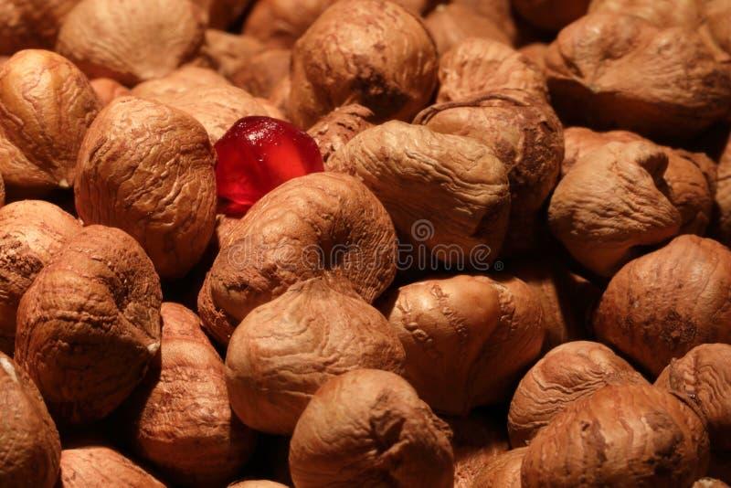 榛子和pomegrante种子 库存图片