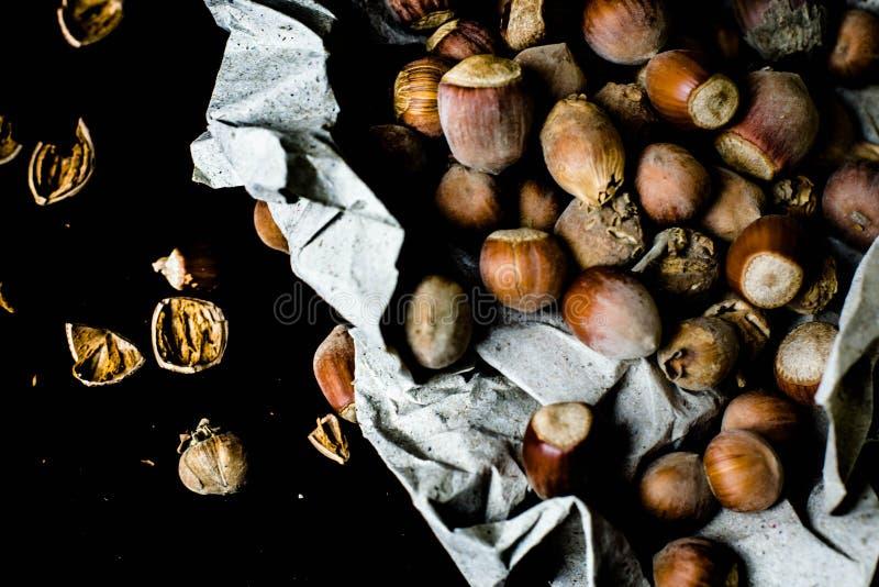 榛子-一最有用和富有在它的物产上 库存图片