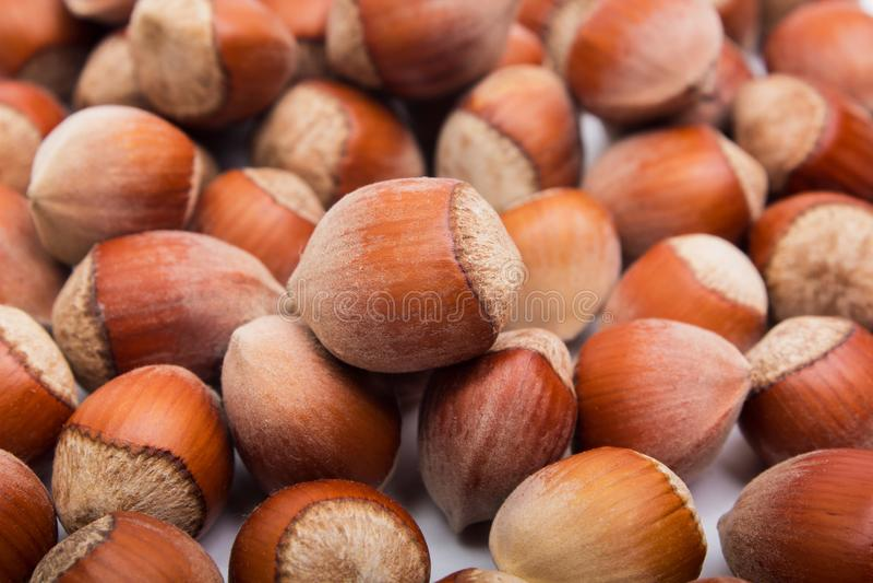 榛子 食物背景,照片墙纸 免版税图库摄影