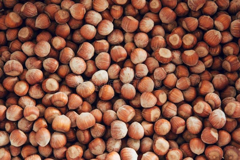 榛子 食物背景,照片墙纸 免版税库存照片