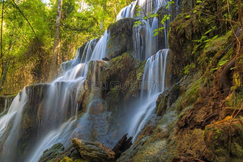 槐老挝人瀑布在黎府的雨林里在泰国,软的焦点 图库摄影