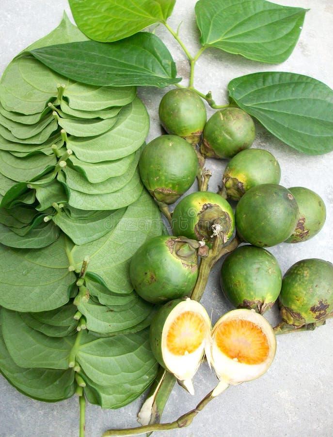 槟榔和叶子 免版税库存图片