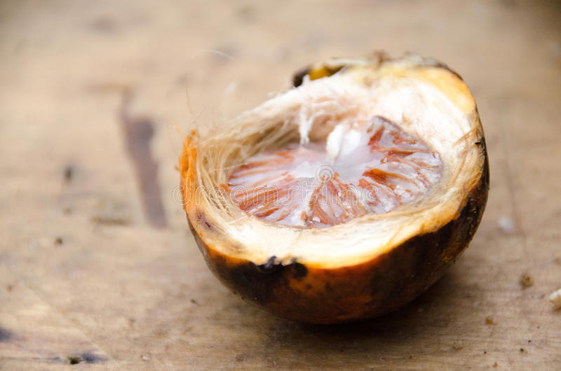 槟榔或槟榔子棕榈在切板背景 selec 库存照片