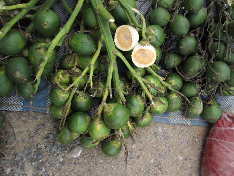 槟榔 图库摄影