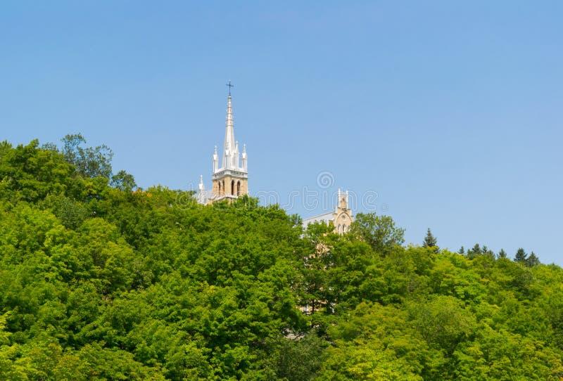 槭树看法在魁北克,加拿大临近sanctuaire de Sainte安妮deBeaupre 免版税库存图片
