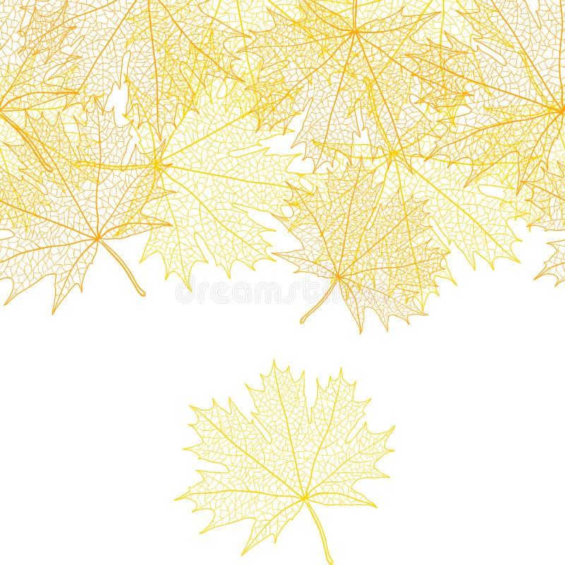 槭树秋天宏观叶子  传染媒介bacground 向量例证