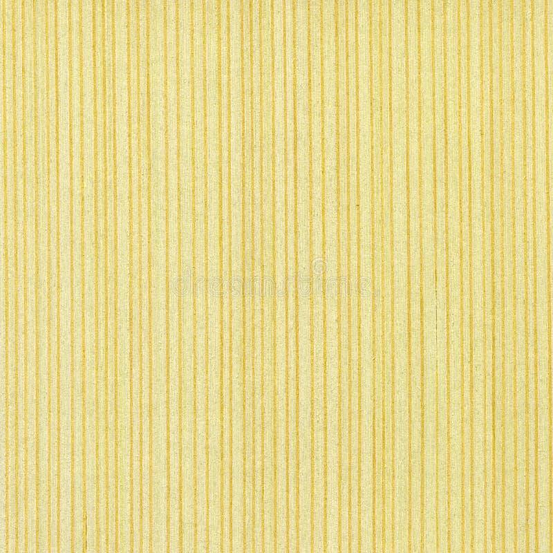 槭树纹理木头 库存照片