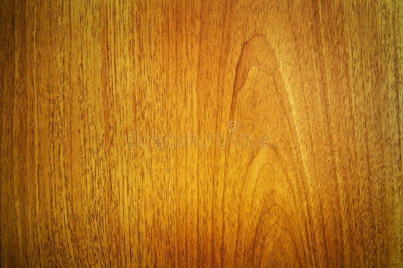 槭树纹理木头 免版税库存照片