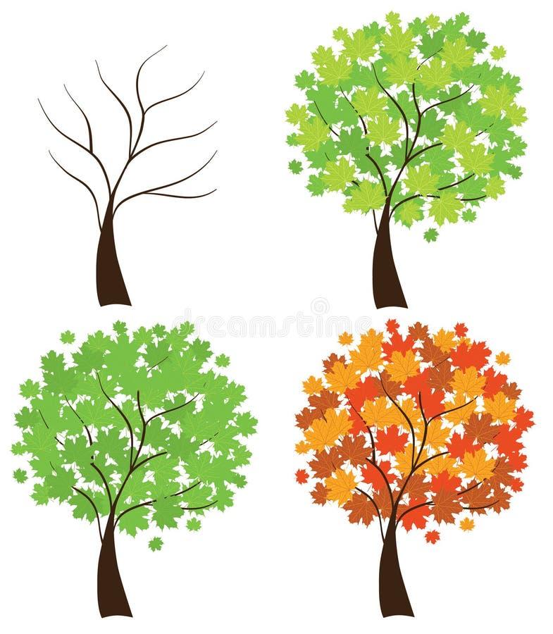 槭树集合结构树 向量例证