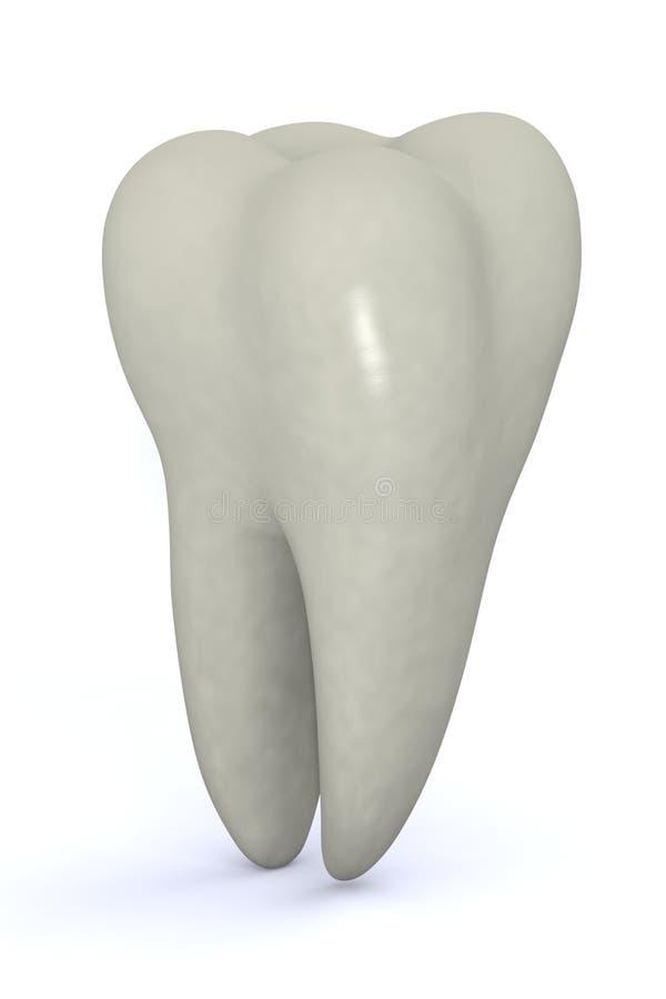 槽牙牙 库存例证