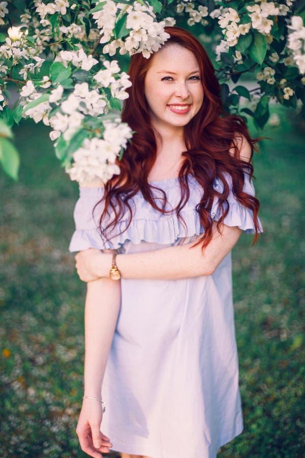 模型奥蕾丝雅在苹果开花摆在 图库摄影