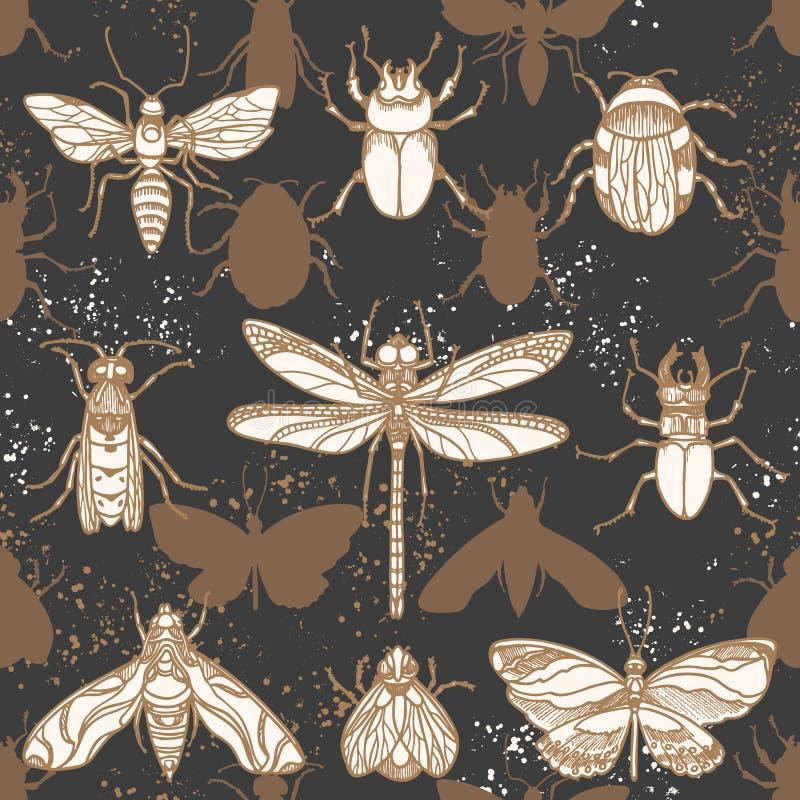 模式无缝的向量 形状昆虫夜 向量例证