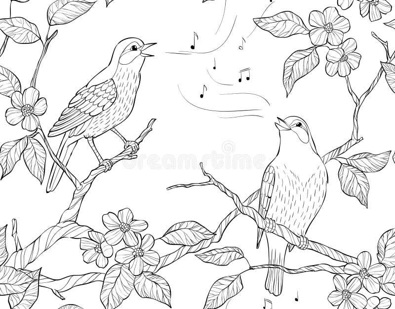 模式无缝的向量 春天庭院构成 鸟在绽放分支唱歌 向量例证
