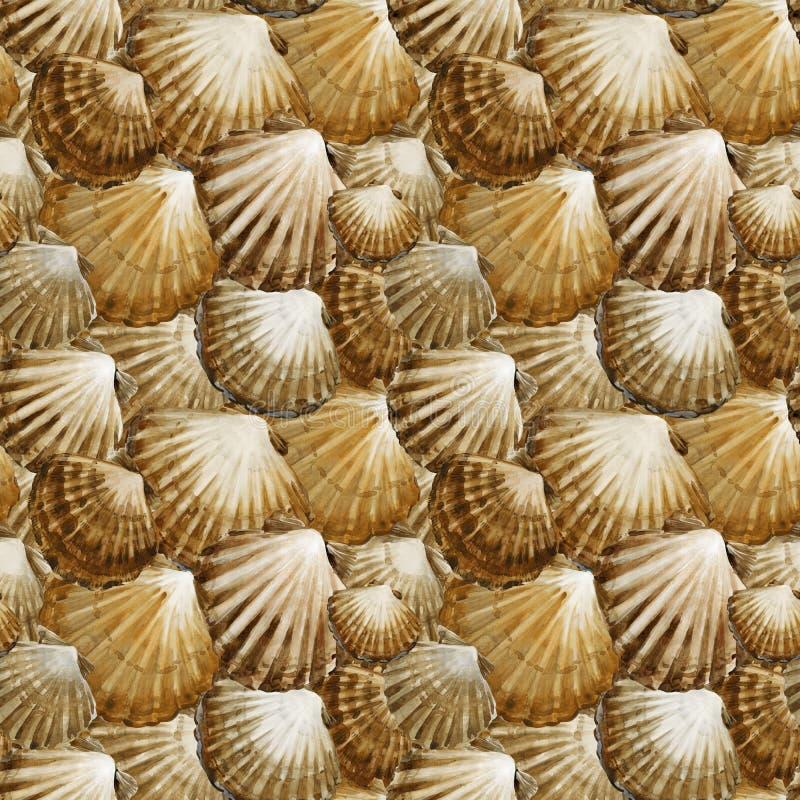 模式无缝的贝壳 海洋水彩背景 海水下的生活 库存例证