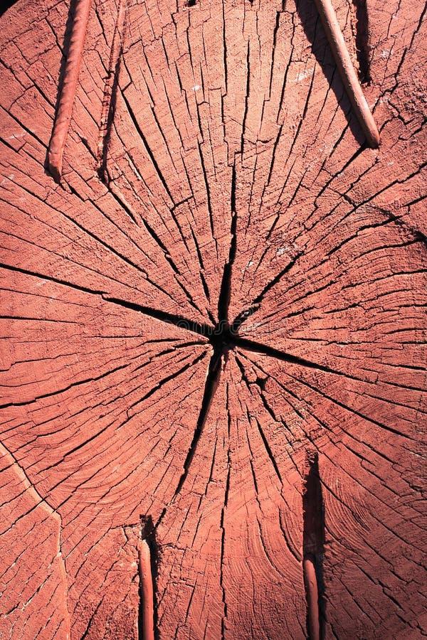 模式片式构造木头 库存图片