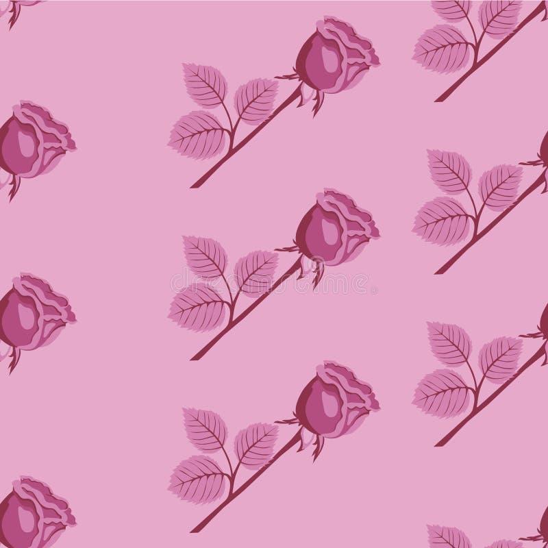 模式粉红色玫瑰无缝的向量 库存例证