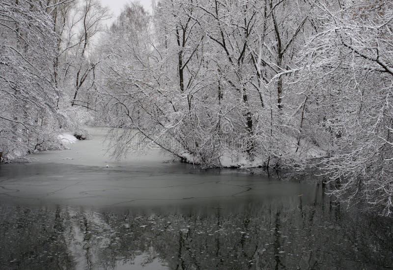 横向俄国村庄冬天 免版税库存图片
