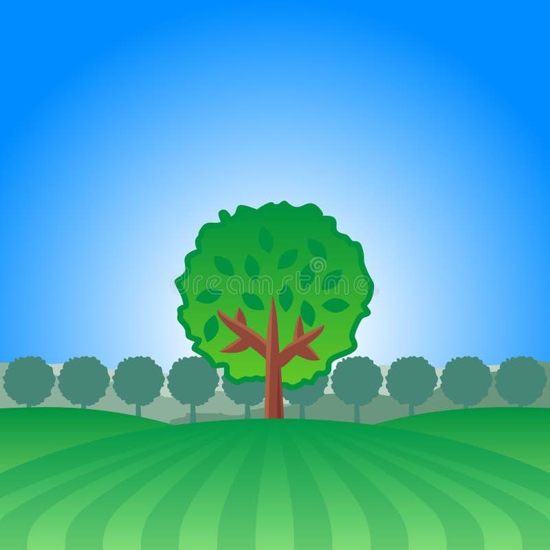 横向偏僻的结构树 库存图片