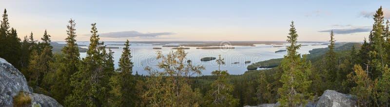横向全景 Koli国家公园 皮耶利宁湖地区 飞翅 免版税库存图片