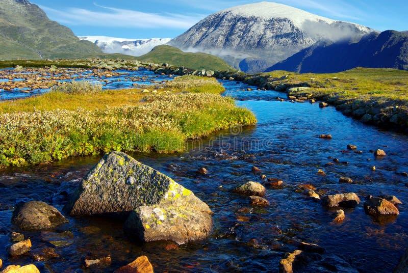 横向山美丽如画的挪威 免版税库存图片