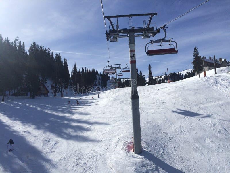 横向推力滑雪多雪的冬天 图库摄影