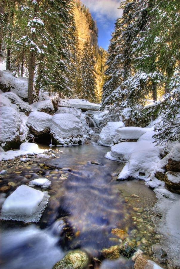 横向河冬天 免版税库存照片