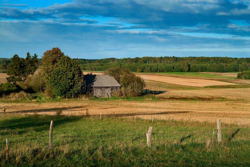 横向波兰农村夏天 免版税库存图片
