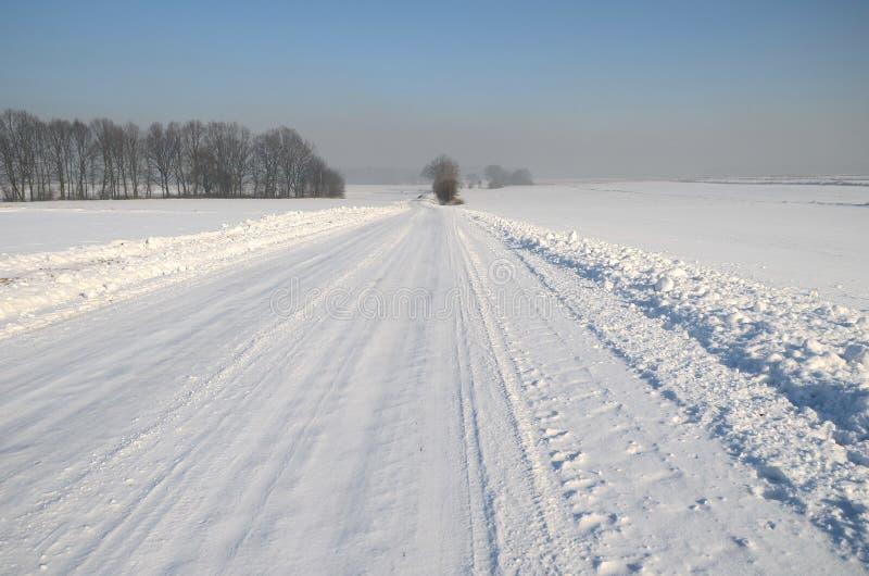 横向波兰冬天 图库摄影