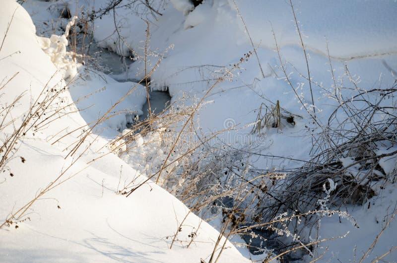 横向波兰冬天 库存图片