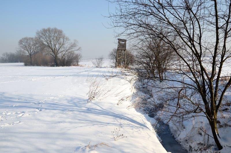 横向波兰冬天 免版税图库摄影
