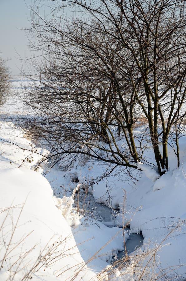 横向波兰冬天 库存照片