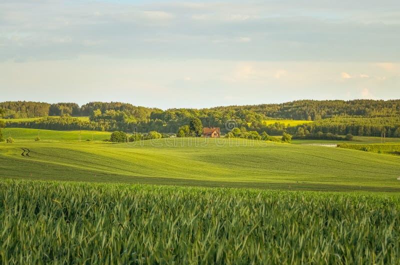 横向波兰村庄 库存图片