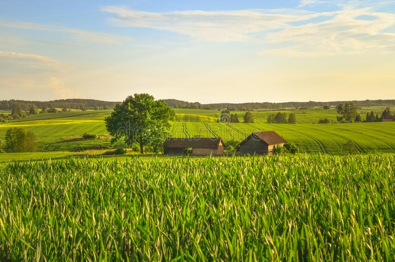 横向波兰村庄 免版税图库摄影